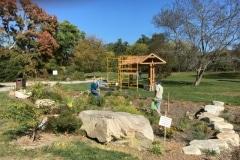 acton-arboretum-20171025-9500