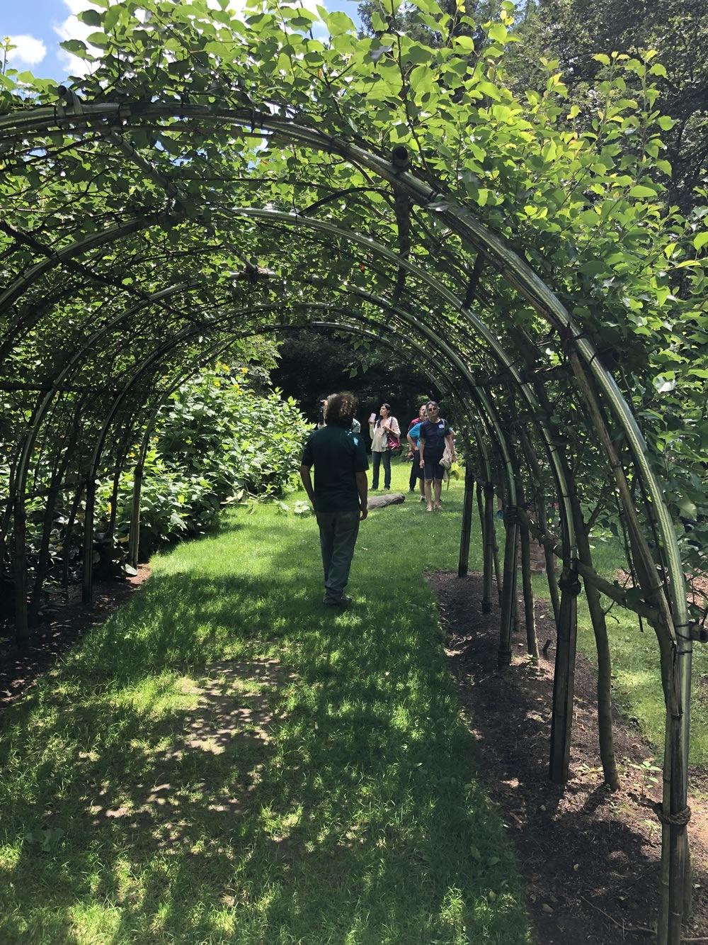 bartlett-arboretum-20190905-00013