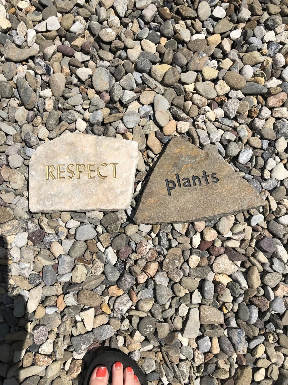 bartlett-arboretum-20190905-00018