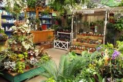 gardeners-20170227-0005